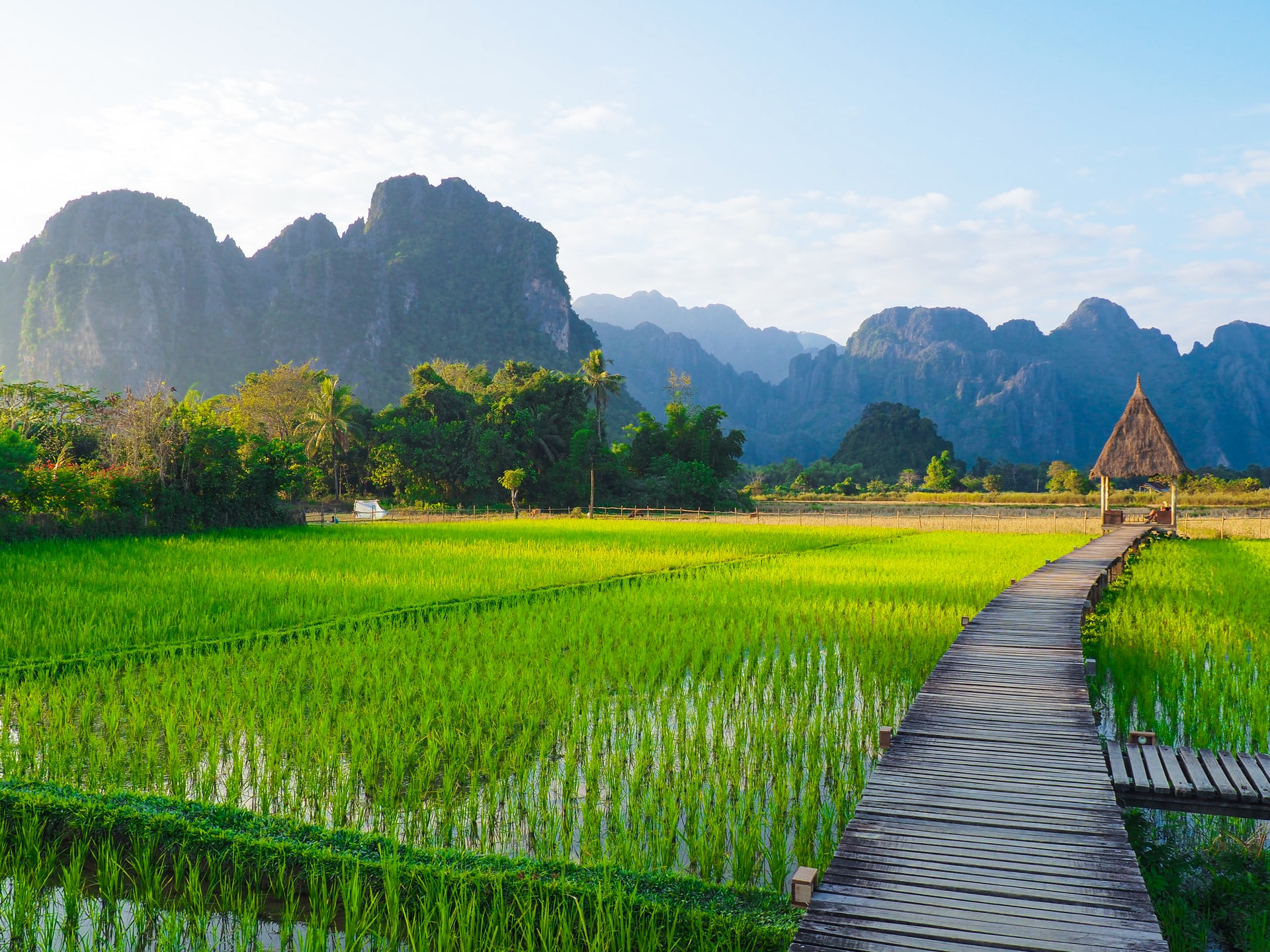 Travel From Laos To Vietnam